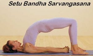 bridge-pose-setu-bandha-sarvangasana