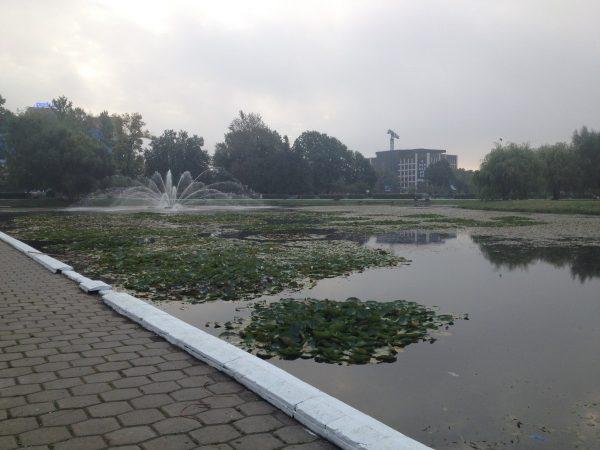 Одинцовский пруд