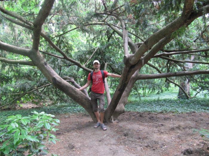 Гурзуф - Никитский Ботанический Сад